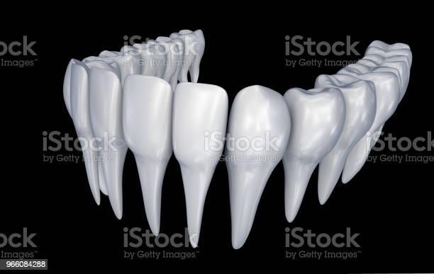 Människans Tänder 3d Instalation Medicinskt Korrekt Tandvård Anatomi 3d Illustration-foton och fler bilder på Anatomi
