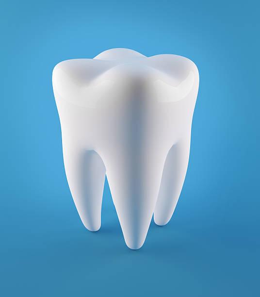 3D Human Teeth stock photo