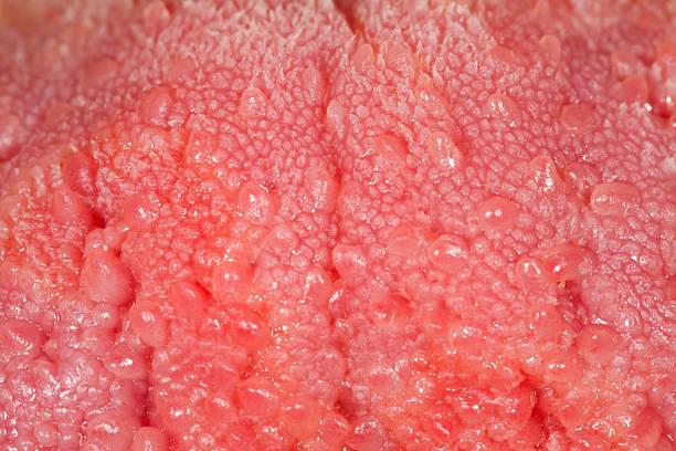 Human tongue texture stock photo