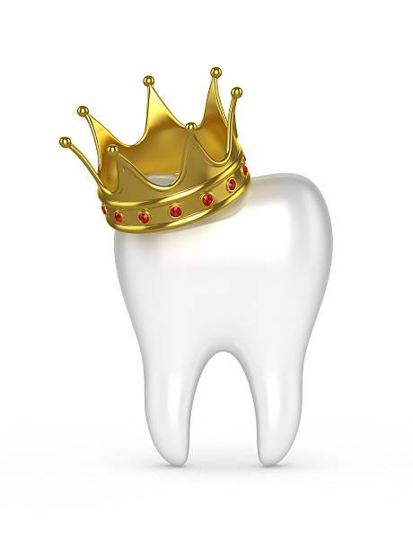 human tooth with a gold crown on a white background. - kunst 1. klasse stock-fotos und bilder
