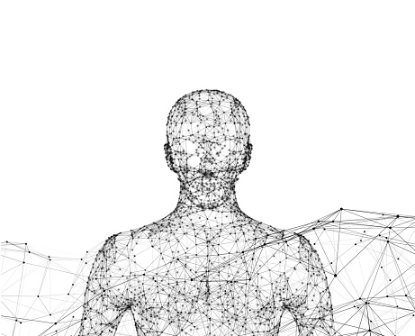 Human Wireframe Model With Connection Lines On White