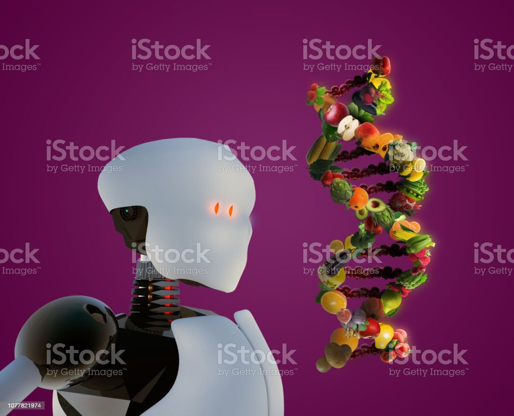 Humanoid robot researching nutrigenetics in human DNA stock photo