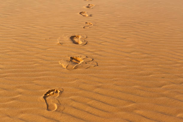 Human's footprints on the wavy sand in desert stock photo