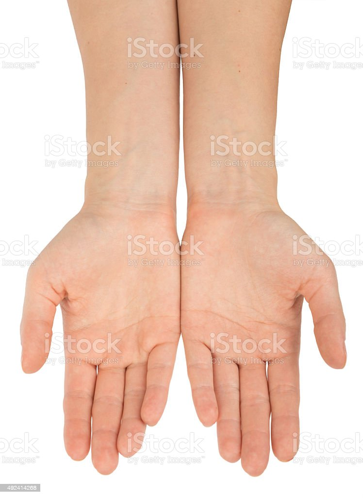 Humans hands on white stock photo