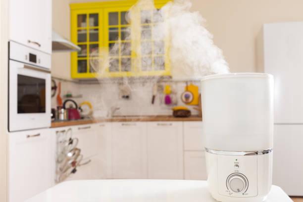 台所の加湿器 - 加湿器 ストックフォトと画像