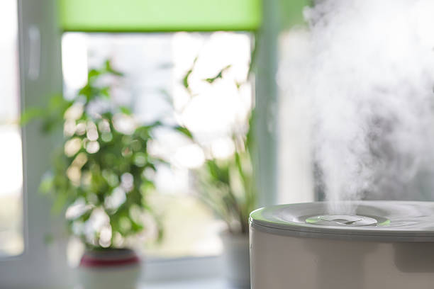 humidifier spreading steam - 加湿器 ストックフォトと画像