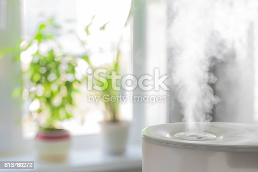 istock Humidifier spreading steam 613760272