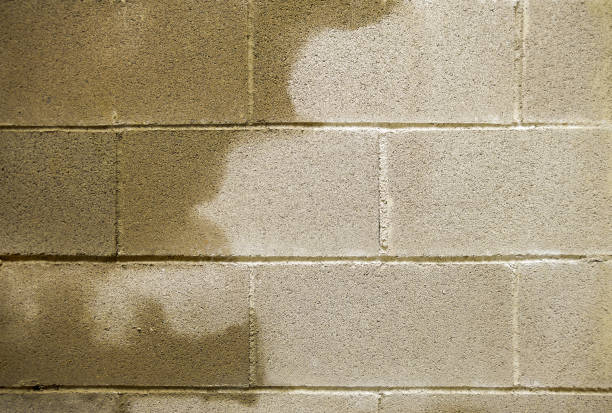 humidity in buildings - basement stock pictures, royalty-free photos & images