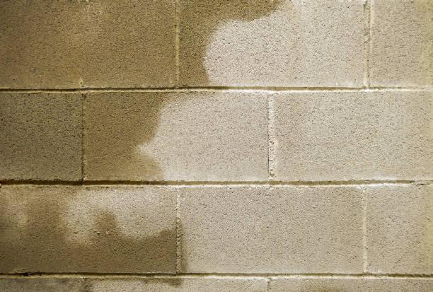 humedad en los edificios - basement fotografías e imágenes de stock