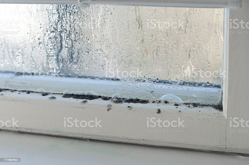 Humidity stock photo