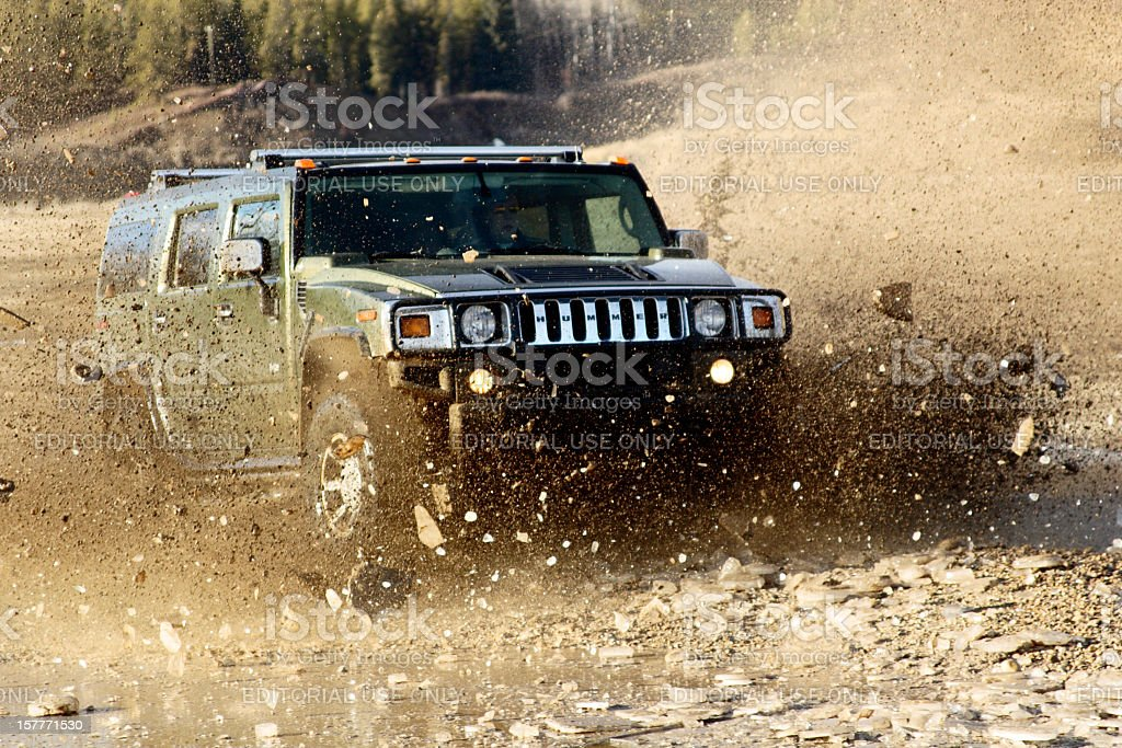 Hummer stock photo