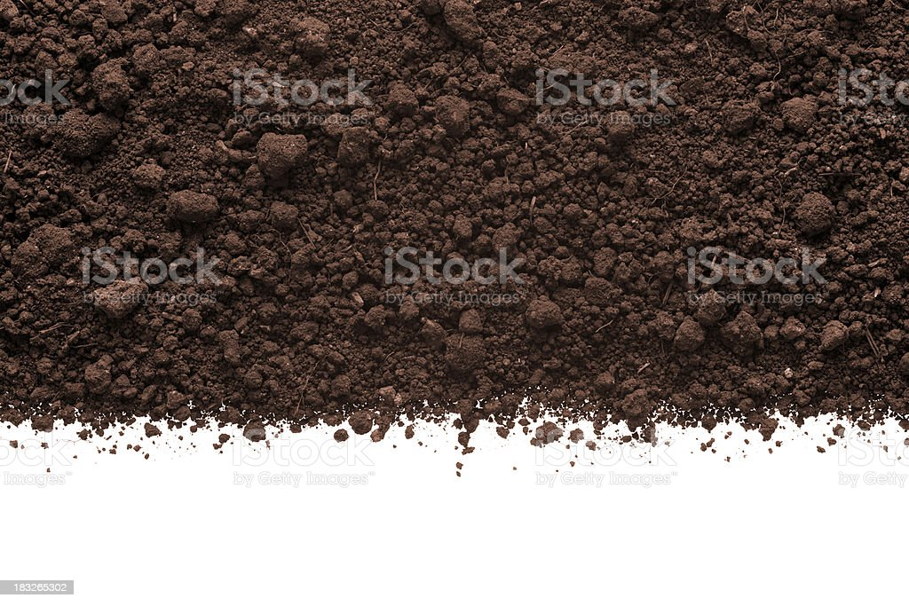 Humus Soil stock photo