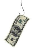hundred dollars as bait on fishing hook