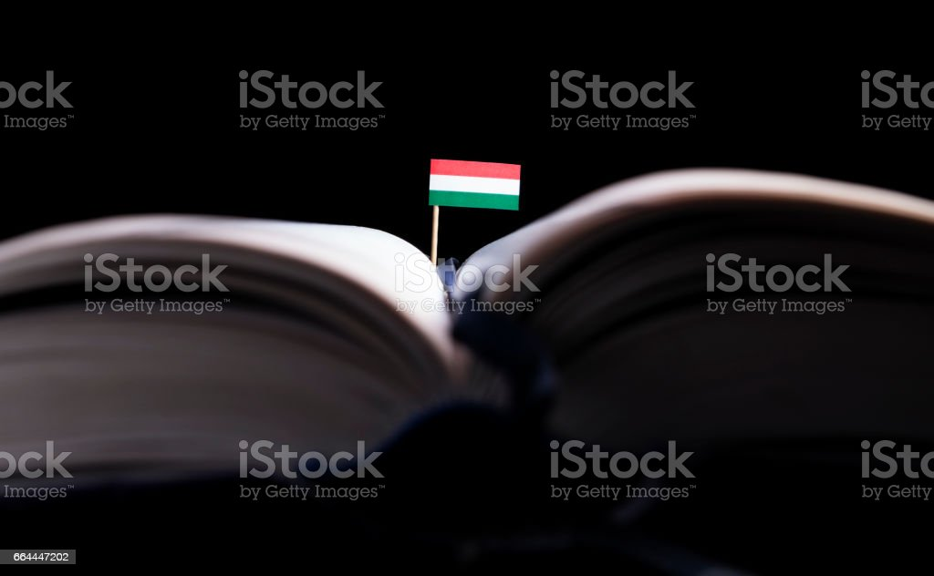 Hungarian flag in the middle of the book. Knowledge and education concept. stock photo