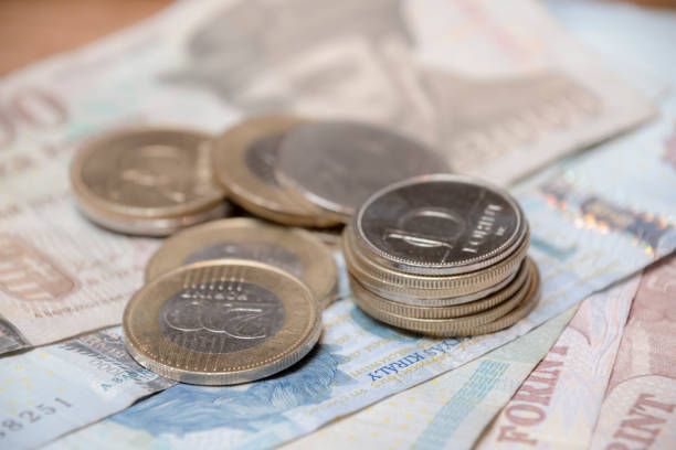 Hungarian Forint coins and notes money stock photo