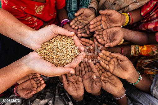 Volunteer caucasian woman giving grain to starving African children. Poor African children keeping their hands up - asking for food. Many African children suffer from poverty - 20% of Africa's children will die before the age of five.  Every day 30,000 children die from a combination of disease- infested water and malnutrition.