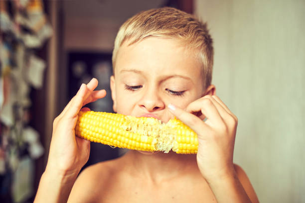 Hungry child with a corncob in his hands stock photo
