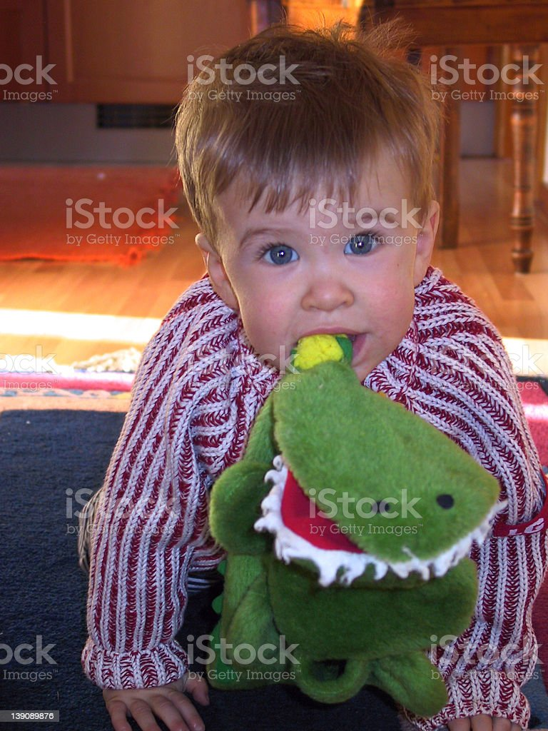 Hungry little boy eating crocodile royalty-free stock photo