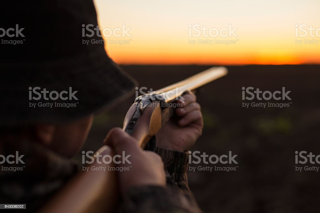 Hunter aiming shotgun in dusk stock photo