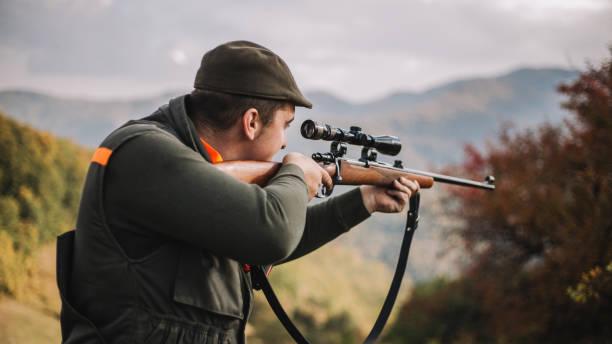 Hunter aiming wild boar - portrait stock photo