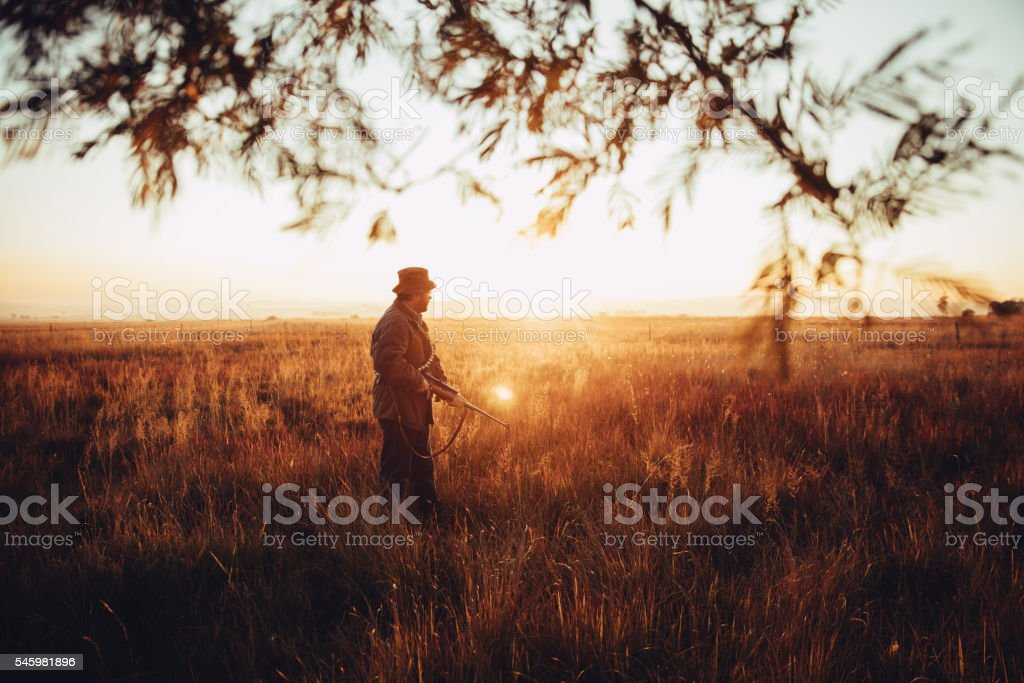 Hunter aims on a field with his rifle and cartridge stock photo