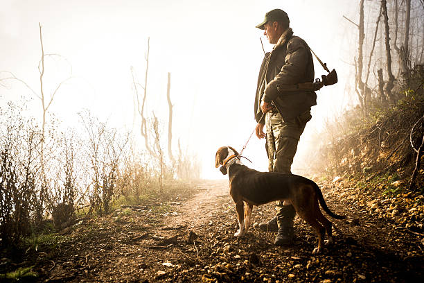 Hunter and his dog in the forest Hunter with rifle standing on gravel road and holding dog on a leash. Bright light is in the background. hunter stock pictures, royalty-free photos & images