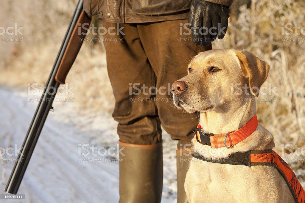 Jäger mit Hund - Lizenzfrei Apportierhund Stock-Foto