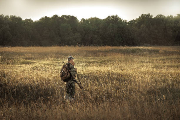hunter hunting in rural field nearby woodland at sunset during hunting season hunter hunting in rural field nearby forest at sunset during hunting season bird hunting stock pictures, royalty-free photos & images