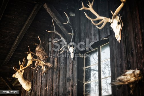 hunter hut with animal skulls as hunting trophies