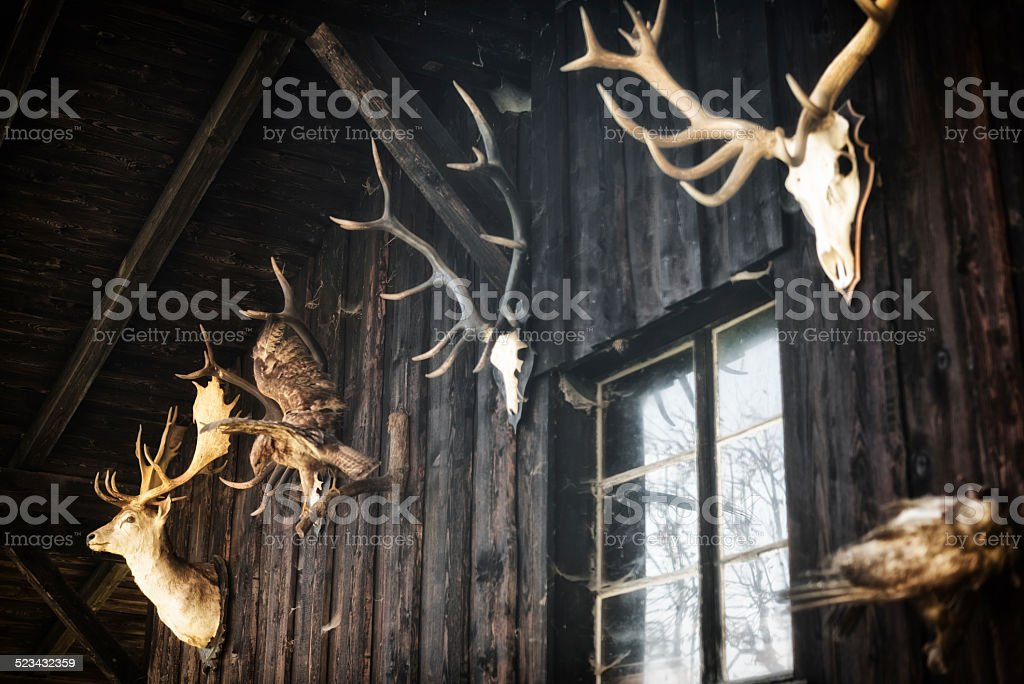 hunter hut with animal skulls in the european alps stock photo