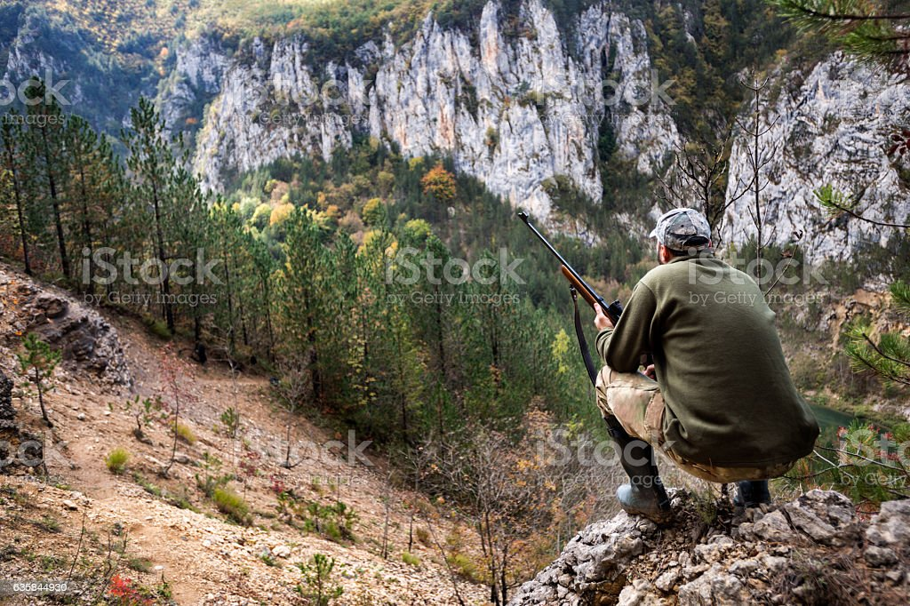 Hunter in the nature – Foto