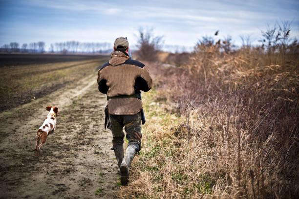 Hunter in the nature Back portrait of hunter with rifle and hunting dog during pursuit. bird hunting stock pictures, royalty-free photos & images