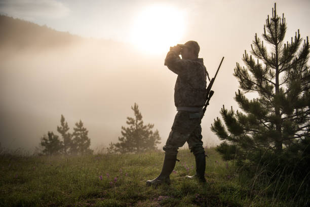 Hunter in the nature Portrait of hunter with rifle and binoculars in the forest. Bright sunlight is in the background. bird hunting stock pictures, royalty-free photos & images