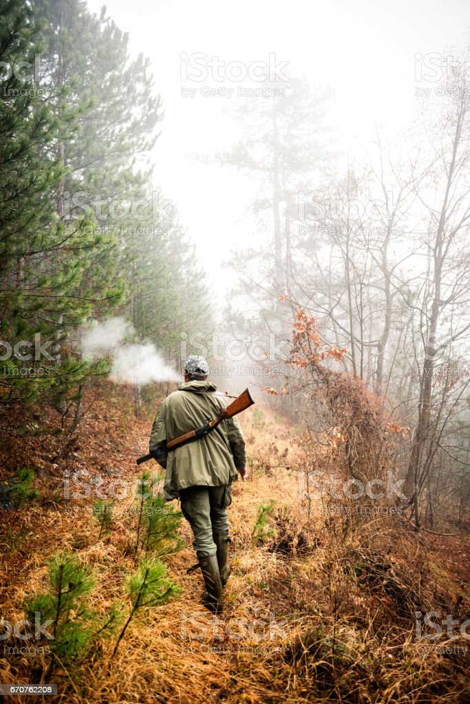 Hunter in the woods stock photo