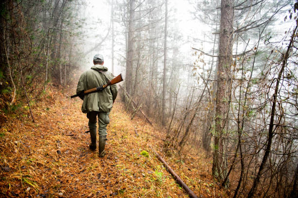 Hunter in the woods Back view of a hunter with rifle walking up the hill in the forest. hunter stock pictures, royalty-free photos & images