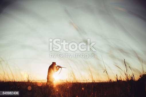istock Hunter loading sniper and shooting prey in long grass 545982406