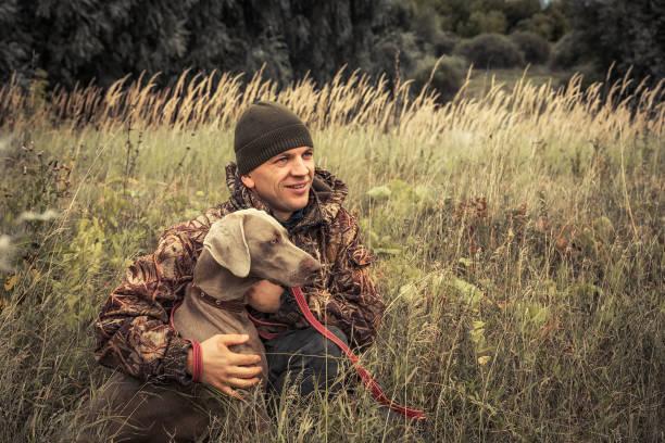 jägare man med jakthund weimaraner i högt gräs på landsbygden fält under jaktsäsongen - rovdjur bildbanksfoton och bilder