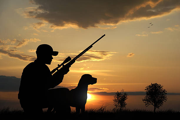 Hunter Hunter with his dog silhouettes on sunset background hunter stock pictures, royalty-free photos & images