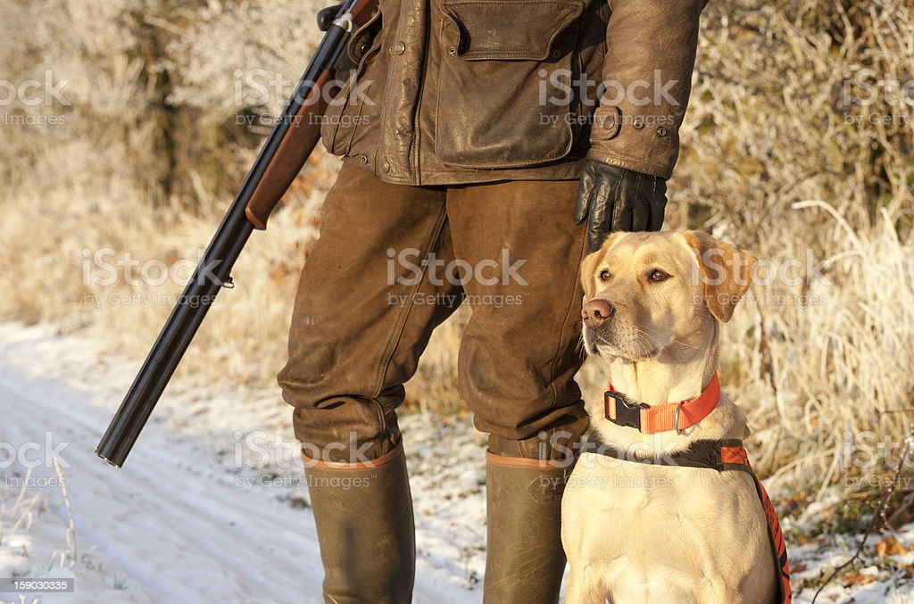 A hunter standing with his gun and dog stock photo