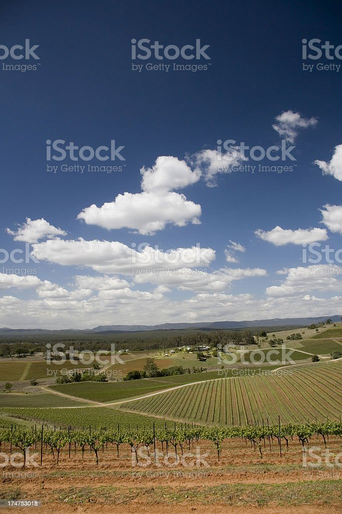 Hunter Valley Australia royalty-free stock photo