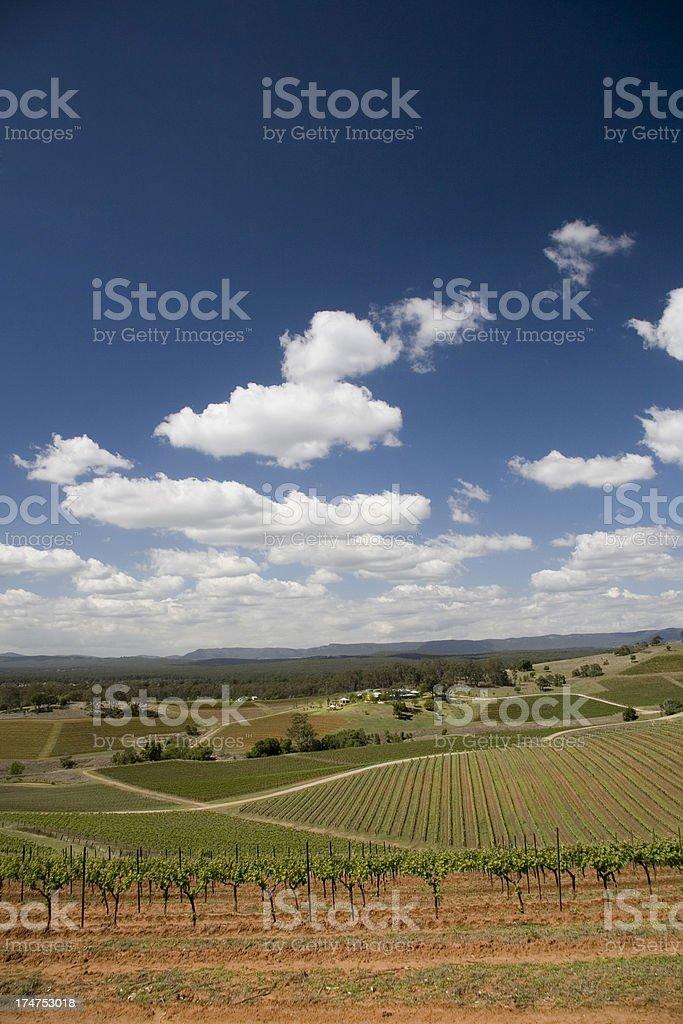 Hunter Valley Australia stock photo