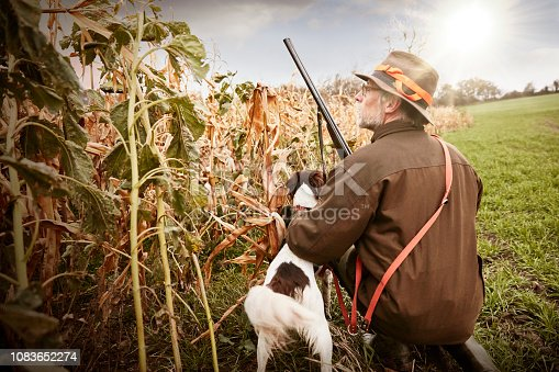 Hunter waiting in the scrub with his dog. Duck hunting / bird hunting