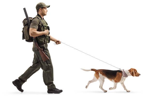 Hunter walking with a beagle dog on a leash picture id1138160184?b=1&k=6&m=1138160184&s=612x612&w=0&h=shjbysug7v4vwrfr1yxgcdxleirgk9wflren 5w wnm=