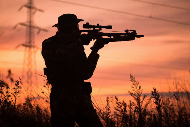hunter with crossbow silhouette - crossbow stock pictures, royalty-free photos & images