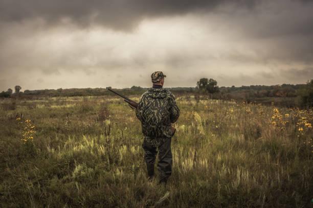 hunter med jakt ammunition pistol går igenom landsbygdsområde under jaktsäsongen i mulen dag - rovdjur bildbanksfoton och bilder