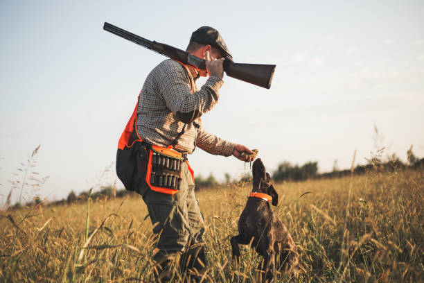 Hunter with hunting dog during a hunt Hunter with hunting dog during a hunt hunter stock pictures, royalty-free photos & images