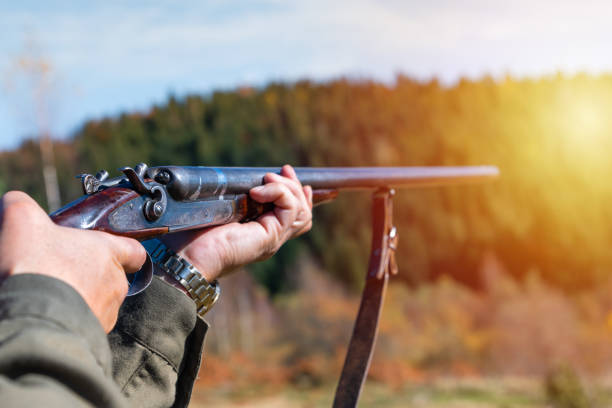 Hunter with retro shotgun aims at the target. Hunting season Hunter with retro shotgun aims at the target. Hunting season. poaching animal welfare stock pictures, royalty-free photos & images