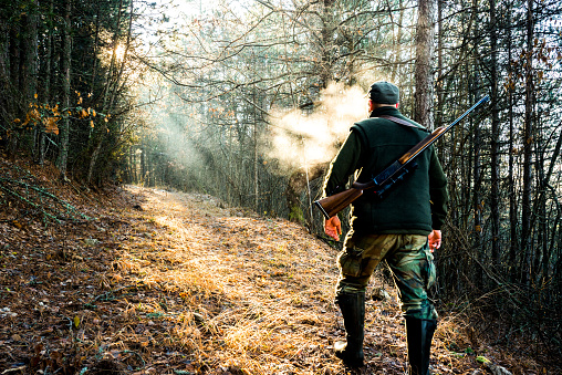 Hunter with rifle viewed from behind while walking uphill towards the sunlight that breaches through the trees.