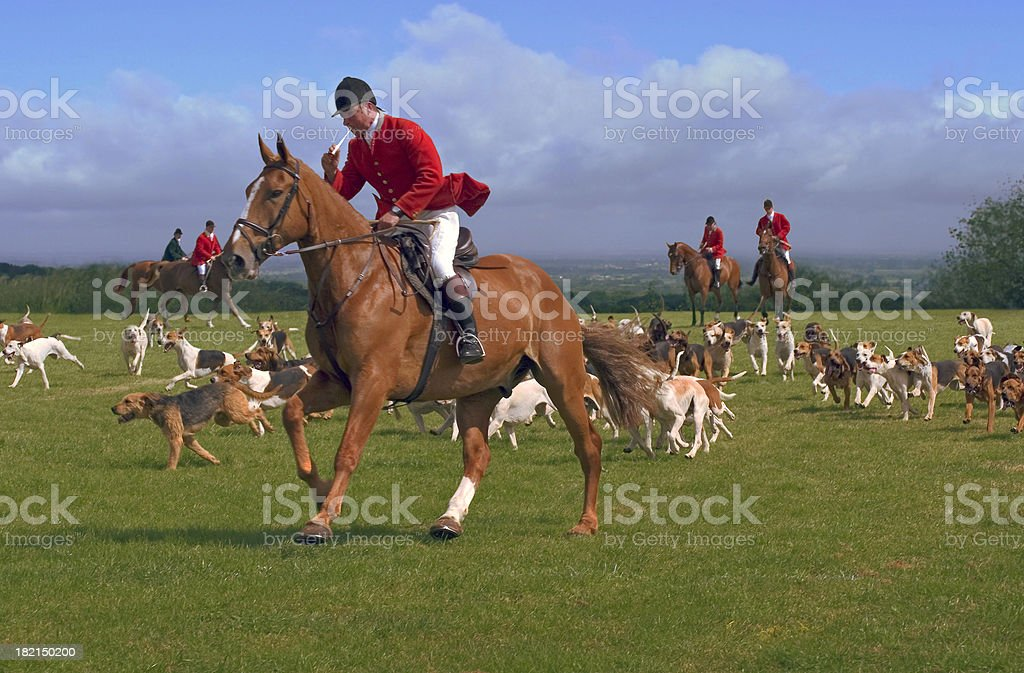 Hunters and hounds stock photo