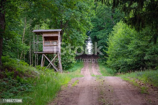 istock Hunters hut in the forest by the road. Hunter tower or watch post in the wilderness. Hunter post is a wooden structure to watch and shoot at wild animals 1169372086